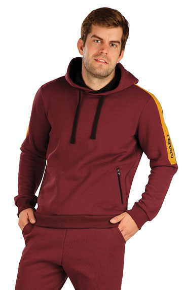 Sweatshirts, Jacken > Herren Sweatshirt mit Kapuzen. 7A301